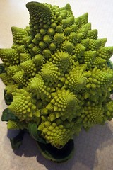 Romanesco Broccoli 4