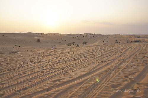 【写真】2014 世界一周 : ドバイ・砂漠(1日目)/2014-12-17/PICT6685