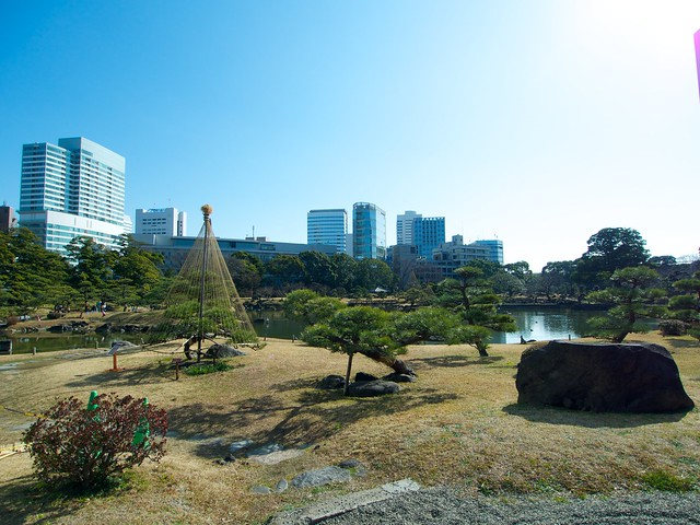 150204_ShibaRikyu 2