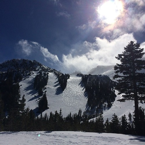 Best Monday ever! #mammothmountain