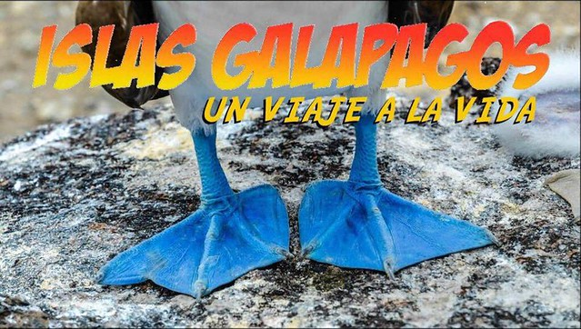 Galápagos, un viaje a la vida (portada)