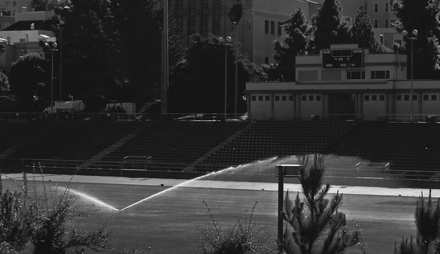 sprinkler at Kezar Stadium (2015)