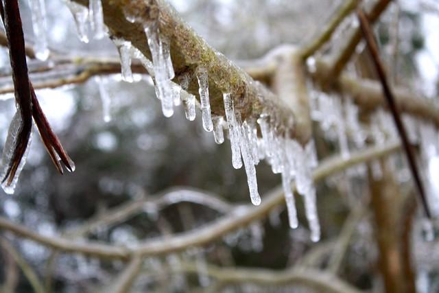 Ice Storm 2015