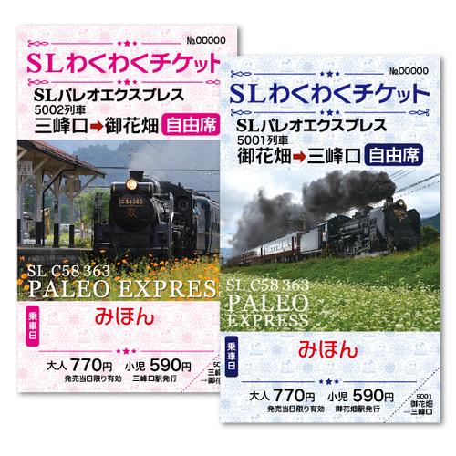 SLわくわくチケット(御花畑⇔三峰口)
