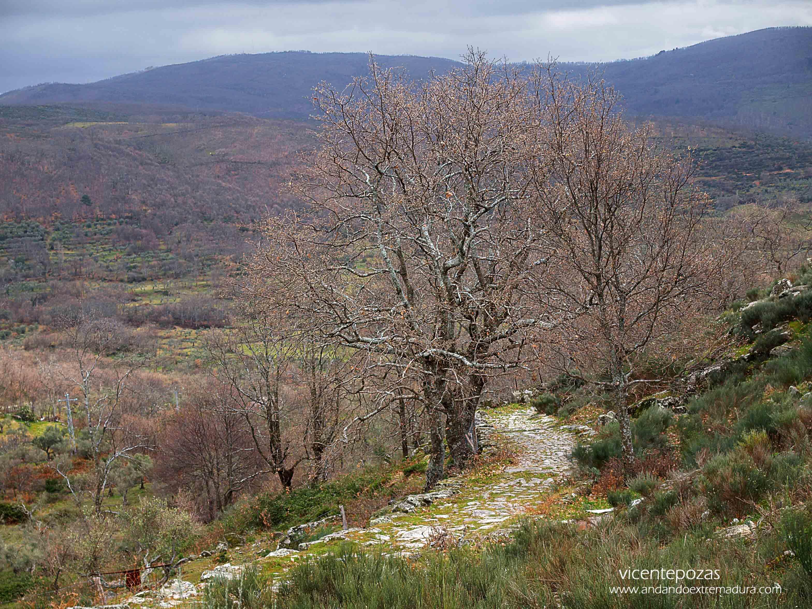 Ruta A Fala. Valle de Jálama. Sierra de Gata
