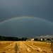 Rainbow by rmf-67