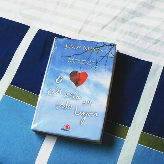 O Céu Está em Todo Lugar, Jandy Nelson, livro, capa, sinopse