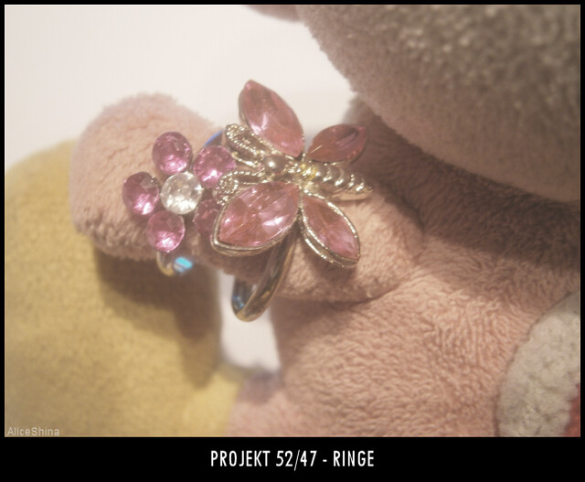 Projekt 52/47 - Ringe