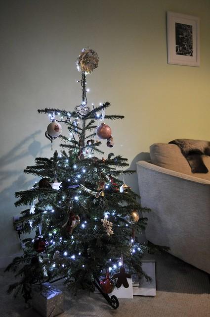 2014-12-07 Christmas tree