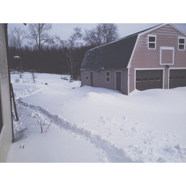 And the clearing must begin. #Juno #juno2015 #maine #207gram #midcoastmaine #waldocounty
