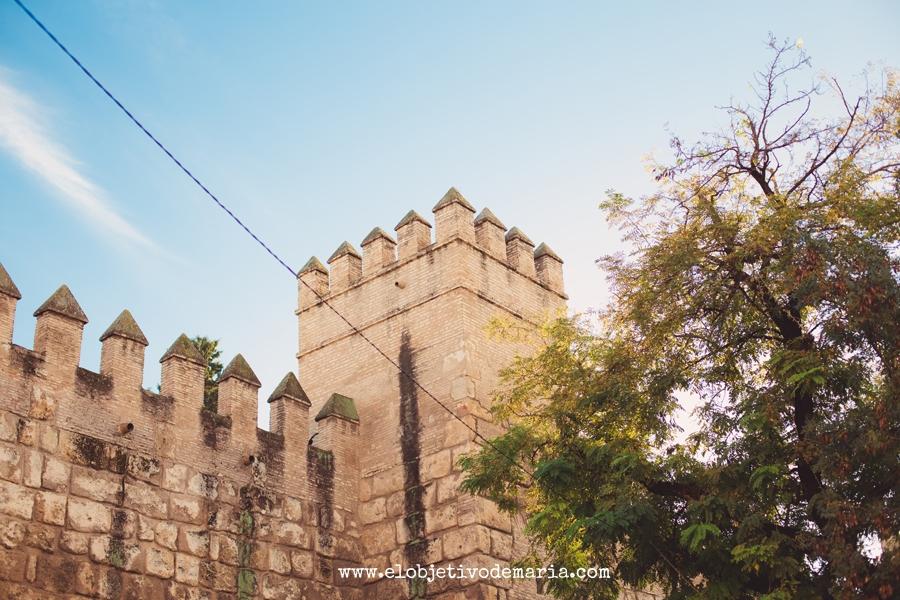 El Alcazar de Sevilla