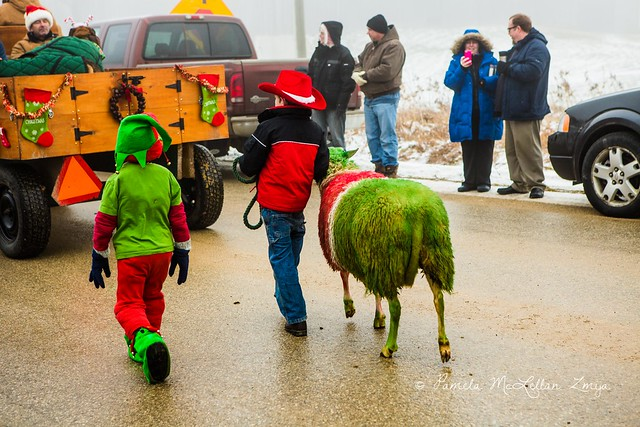 20141213-HolsteinChristmasParade-WM-18