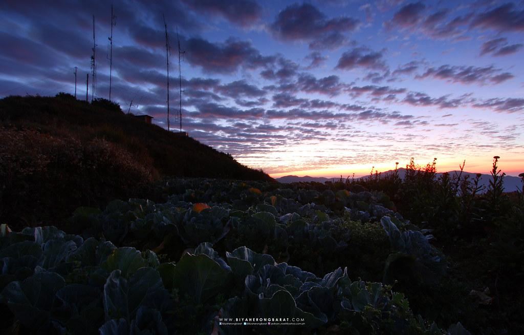 Atok Kabayan Benguet Mount Timbak sunrise