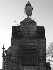 Paddington Old Cemetery