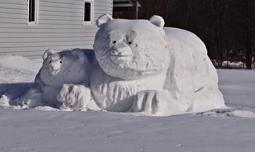 bear winter snow cold