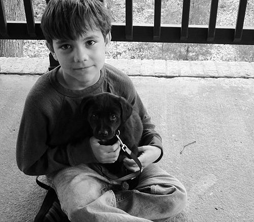 Cinder Pup + Liam