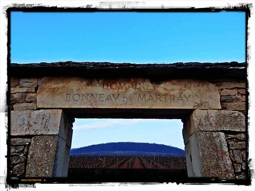 Corton-Charlemagne Bonneau du Martray
