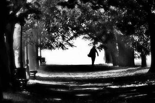 a walk....