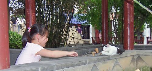 geo:lat=3115878700 geo:lon=12071347200 geotagged china chn jiangsu katze mädchen tongli 中国 同里 奴子 江苏 猫