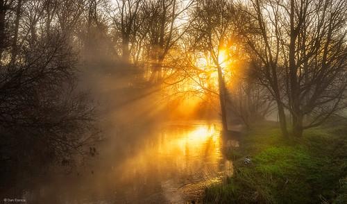 landscape mist park sunrise fog morning spring water river sun light tree dawn valley riverside england sunrays miltonkeynes sony a7r ouzel duck glow countryside f64g80r1win