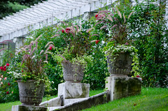 Yaddo Garden