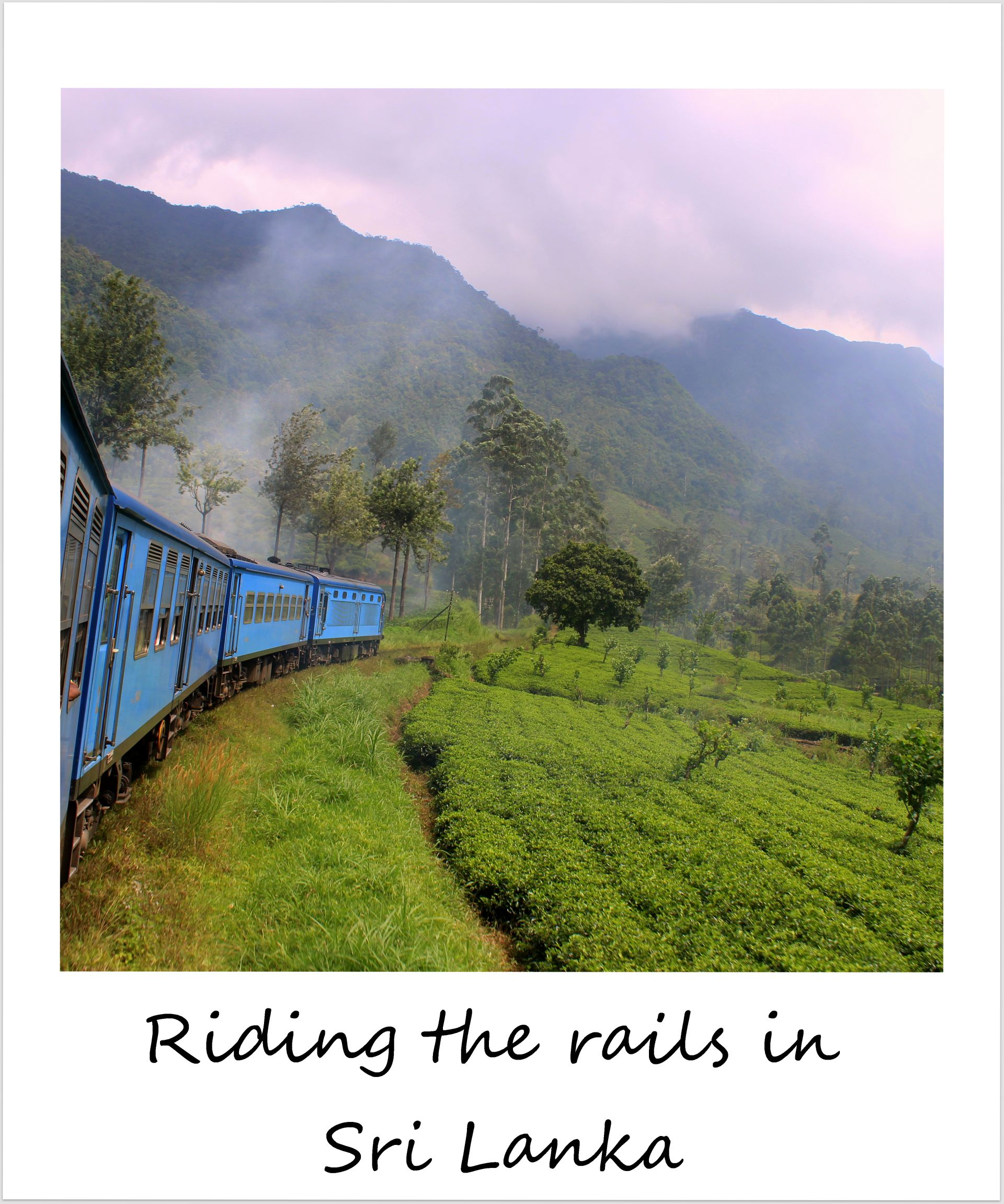 polaroid of the week sri lanka train ride tea country