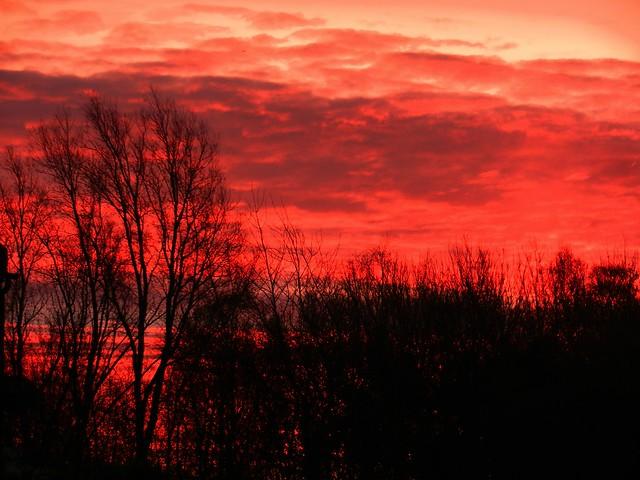 Winter Sunrise DSCN3770