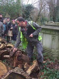 Russell Miller leads tree walk, Abney Park