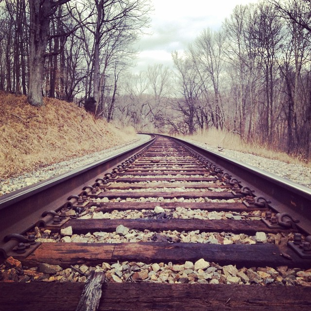 """We think too much and feel too little."" -Charlie Chaplin #rr #railroad #tracks #hike #potapsco"