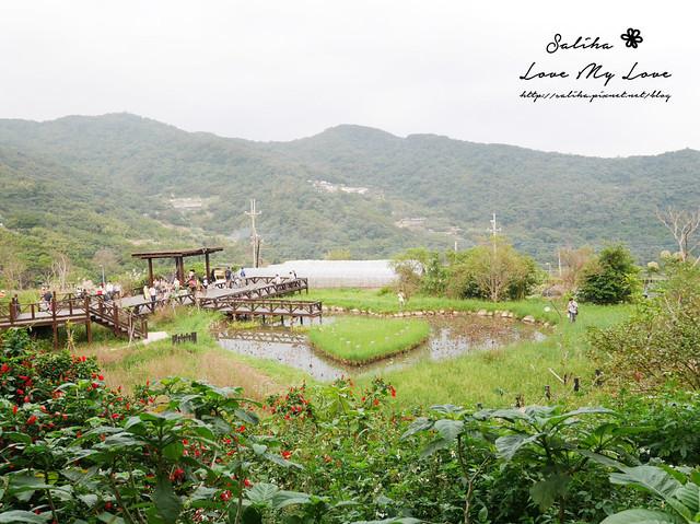 內湖採草莓圃咖啡下午茶 (27)