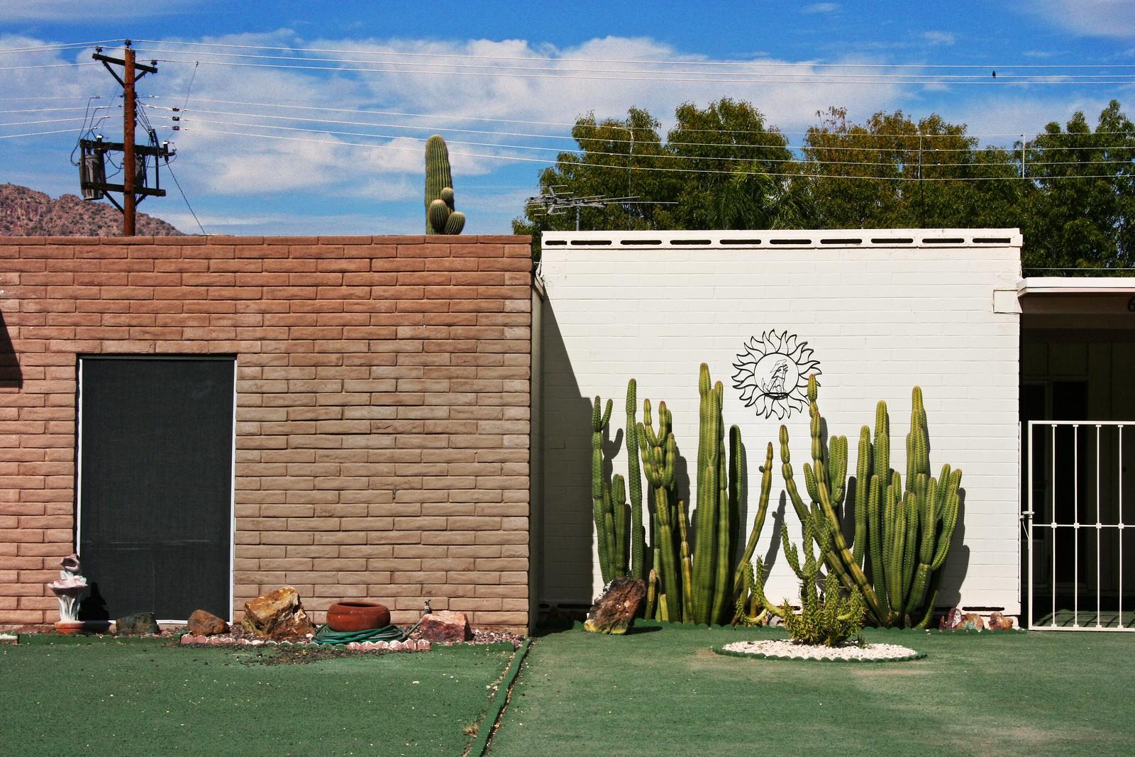 Astroturf Paradise, Scottsdale, Arizona, 2006