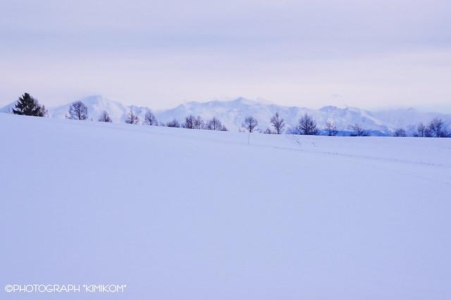 SnowLand Blue
