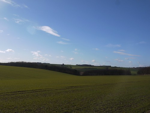 Berkshire Downs