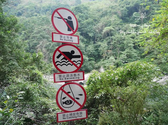烏來景點內洞森林遊樂區 (6)