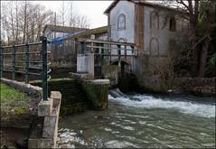 Les Ormes-sur-Voulzie 77 (moulin du Chatelot)