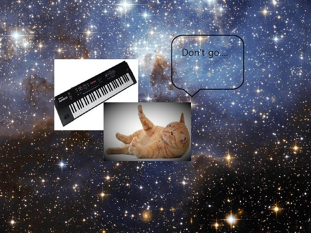 Cats. On Synthesisers. In Space.