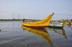 Ennore Fishing port