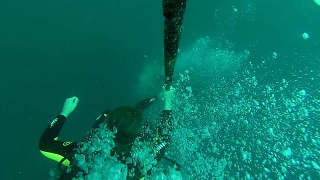 vlcsnap-2014-08-18-18h24m34s41
