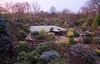 Red December dawn in our upper garden