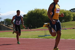 sprint, athletics, track and field athletics, endurance sports, sports, running, 800 metres, heptathlon, athlete,