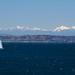 Sailboat in Elliott Bay by jennymburns