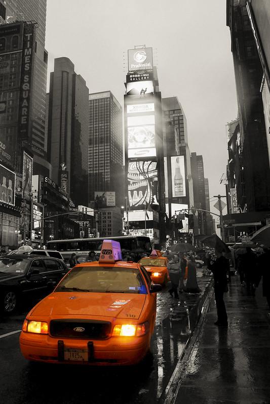 NYC (17)-