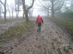 Helen on the very wet and muddy path Image