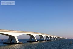 Seeland Brücke