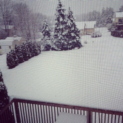 This is some crap. #snow #allentown #ihatewinter