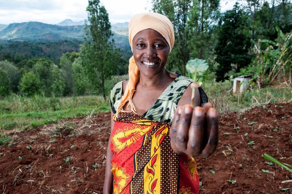 Sharifa Juma digs terraces to stop soil erosion