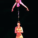 Small photo of Acrobats