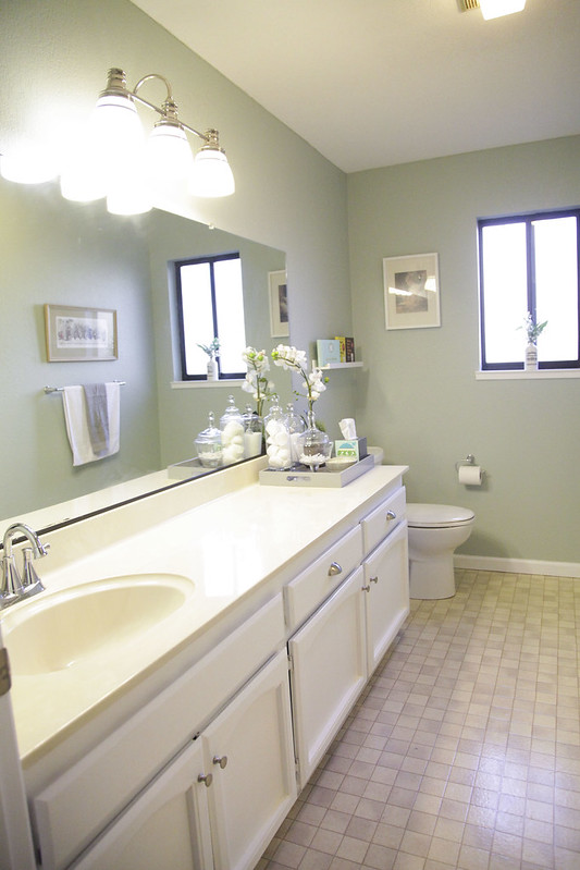 The Guest Bathroom Reveal