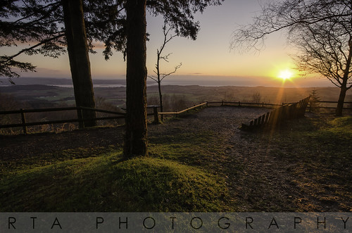 trees light sun sunrise dawn december mamhead eastdevon haldonforrest rtaphotography