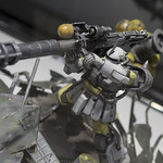 GBWC2014_World_representative_exhibitions-265
